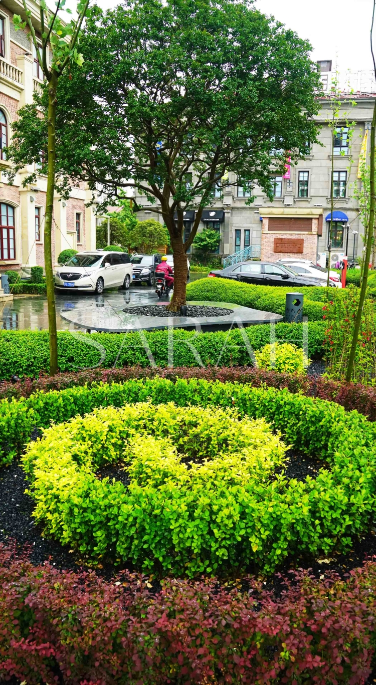 屋顶花园设计 别墅花园设计 庭院设计 景