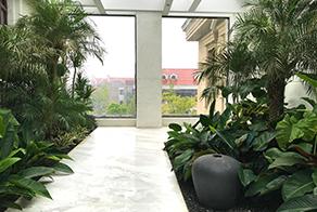 花园设计 花园施工 屋顶花园设计 庭院施