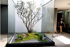 花园设计 花园施工 现代花园设计 私家花