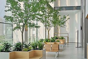花园设计花园施工 庭院设计 庭院施工 私